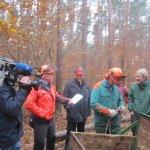 Waldarbeit Winter 2014/15